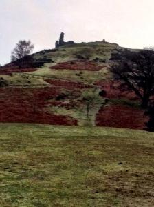 Castle_Dinas.JPG